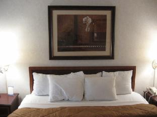 Comfort Inn Arlington Boulevard Falls Church