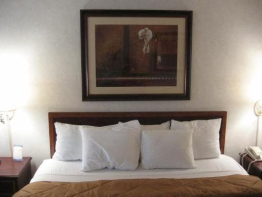 Comfort Inn Arlington Boulevard Falls Church hotel accepts paypal in Falls Church (VA)