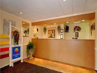 Comfort Inn Of Orange Park Orange Park (FL) - Reception