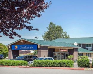 Reviews Comfort Inn Kirkland