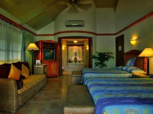 Alegre Beach Resort Cebu - Guest Room