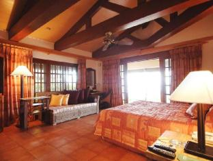 Alegre Beach Resort Cebu City - Guest Room