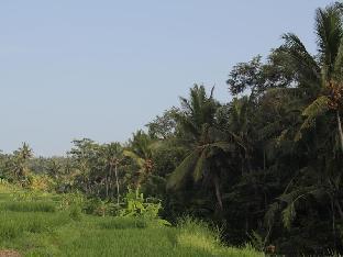 Jalan Raya Ir. Sutami, Br Batusepih Kemenuh Ubud