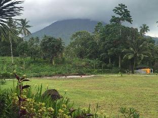 Jl. Johan Pinontoan, Lingkungan 1 Kel.Danowudu Kec. Ranowulu Bitung Sulawesi Utara