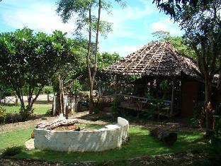 リ ワイルド ハウス Re-wild House