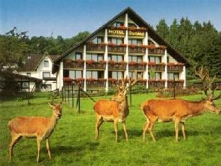 Hotel in ➦ Obersteinebach ➦ accepts PayPal