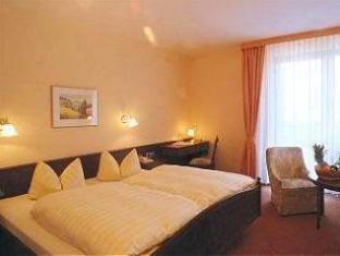 TOP Hotel am Bruchsee Heppenheim - Double Room