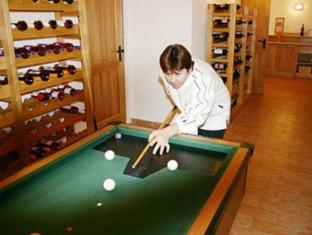 Hotel Fonix Balatonfoldvar - Recreational Facilities