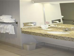 Holiday Inn Hotel & Suites Ottawa Downtown Ottawa (ON) - Bathroom