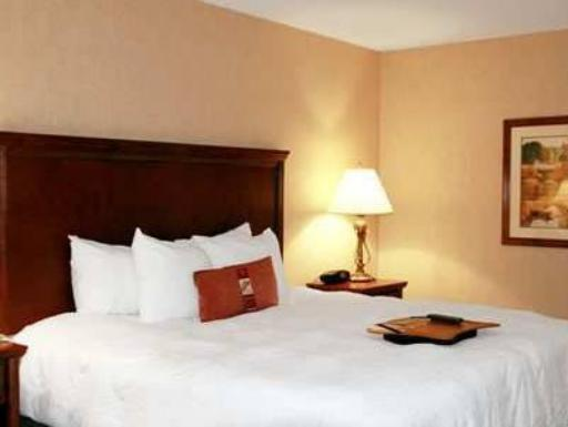 Hampton Inn St. Louis Airport  hotel accepts paypal in Saint Louis (MO)
