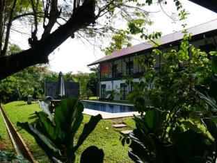 Basaga Holiday Residences Kuching - Poolside Rooms