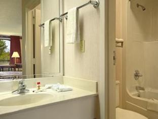 Super 8 Motel  Dothan Dothan (AL) - Bathroom