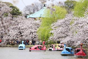 Centurion Hotel & Spa Ueno Station -Artificial Radium Hot Spring