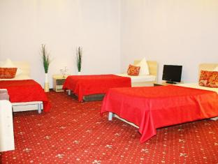 Midland Sheremetyevo Hotel Moscow - Guest Room