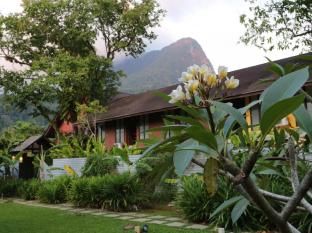 The Village House Kuching - Giardino