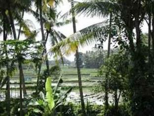 Villa Jineng Bali - Taman