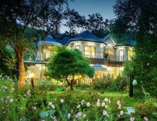 Ivy House - Jasmine
