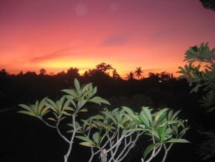 Desak Putu Putera Homestay Bali - Okolí
