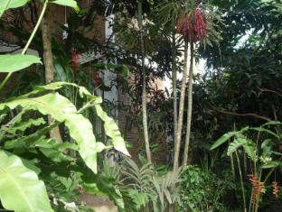 Tropical Bali Hotel Bali - Have
