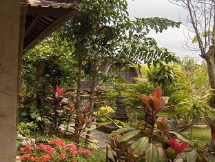 Suastika Bed & Breakfast Bali - Garden