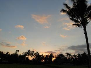 Indigo Tree Bali - Night sky over Bali