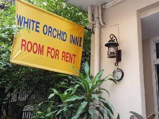 ホワイト オーキッド ナナ White Orchid Inn Nana