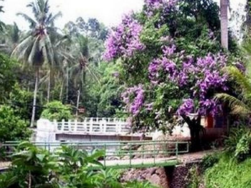 Bumi Kedaton Resort picture