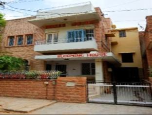 Bloominghouse Homestay Jodhpur