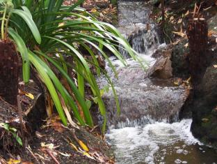 Adelaide Hills Bed & Breakfast Accommodation Adelaide - Little waterfalls in the garden
