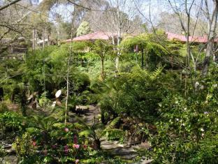 Adelaide Hills Bed & Breakfast Accommodation Adelaide - In the garden