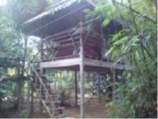 Khao Sok Valley Lodge discount