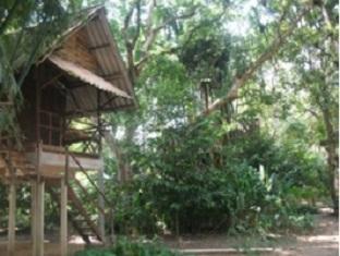 booking Khao Sok (Suratthani) Khao Sok Valley Lodge hotel