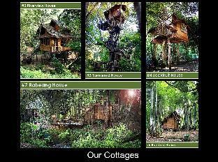 ラベン パサック ツリー ハウス リゾート Rabeang Pasak Tree House Resort