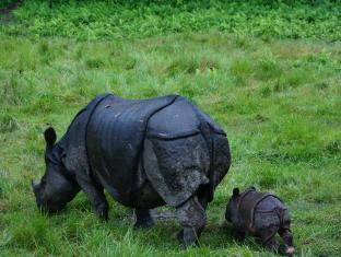 Baghmara Wildlife Resort Parc national de Chitwan - Alentours