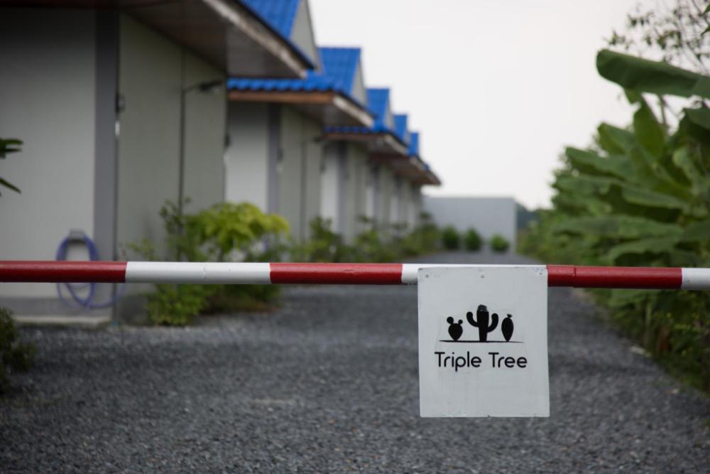 The Triple Tree Resort