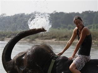 Chitwan Adventure Resort Chitwan National Park - Elephant Wash