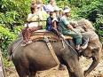 Wildlife Adventure Resort Chitwan National Park - Okružje