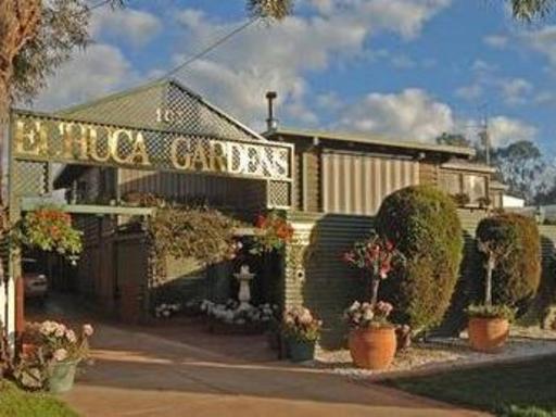 Echuca Gardens Accommodation PayPal Hotel Echuca