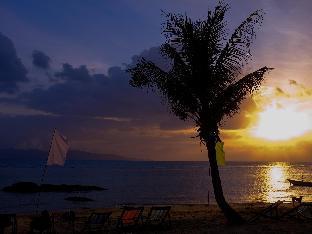 タニザ ビーチフロント リゾート Thaniza Beachfront Resort