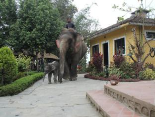 Hotel Sapana Village Lodge Chitwan Национален Парк Читиуан - Градина