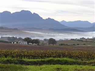 Allegria Guesthouse & Vineyards Stellenbosch - Manzara