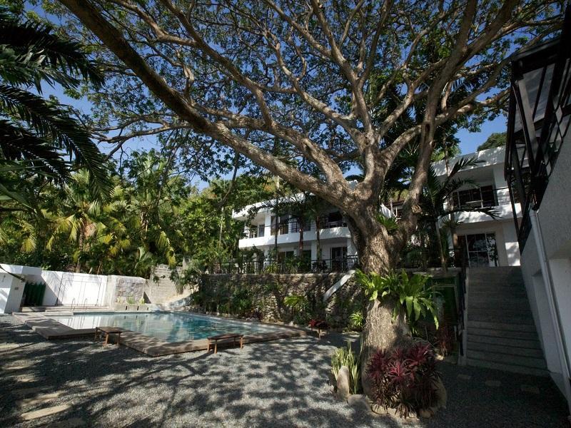Acacia resort dive center anilao batangas - Acacia dive resort ...
