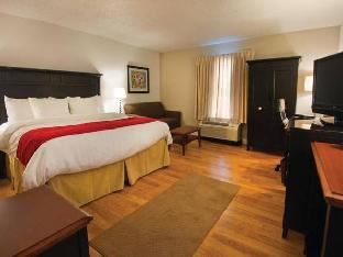 Best PayPal Hotel in ➦ Amherst (NY): Hampton Inn and Suites Buffalo Airport
