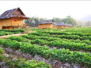 Pai See Tong Strawberry Farm Resort