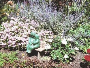 Black Horse Inn Lincolnville (ME) - Zahrada