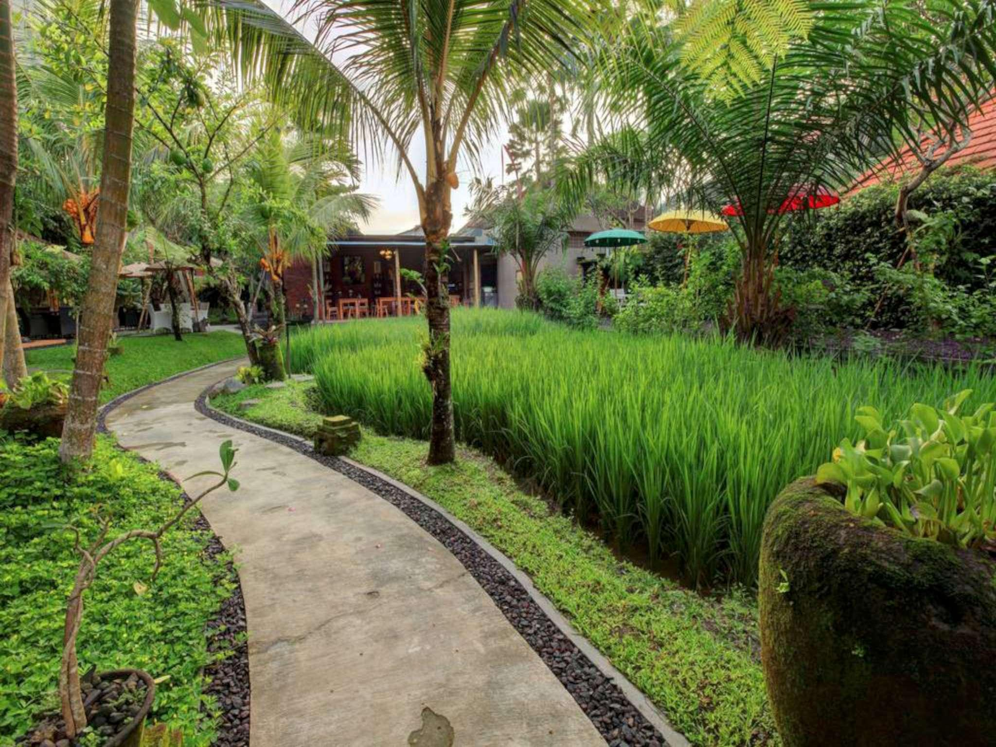 Room Suite Kitchen Close to Monkey Forest Ubud