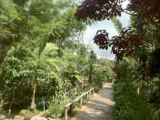 Nature Land Hotel Kalaw - Garden and Walk Way