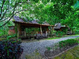 ザ クリフ アンド リバー ジャングル リゾート The Cliff and River Jungle Resort