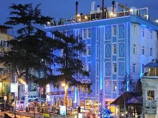 BLUE HOUSE HOTEL  class=
