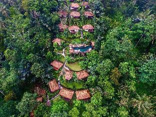 ナンディニ バリ ジャングル リゾート&スパ ウブッド4